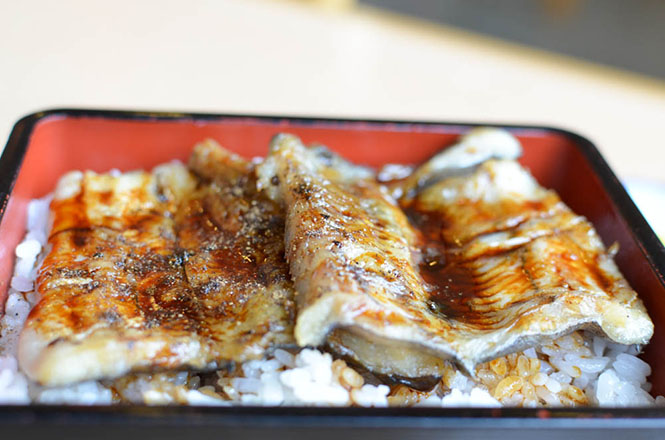 Grilled Pike Congera Sea Eel Rice Bowl -Shiretoko Restaurant in Rausu-