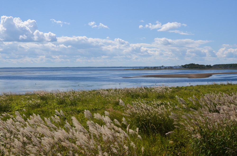 Notsuke Peninsula in Bekkai