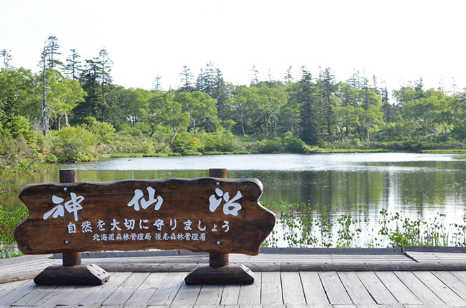 Shinsen-numa Wetland and Shinsen-numa Swamp in Niseko