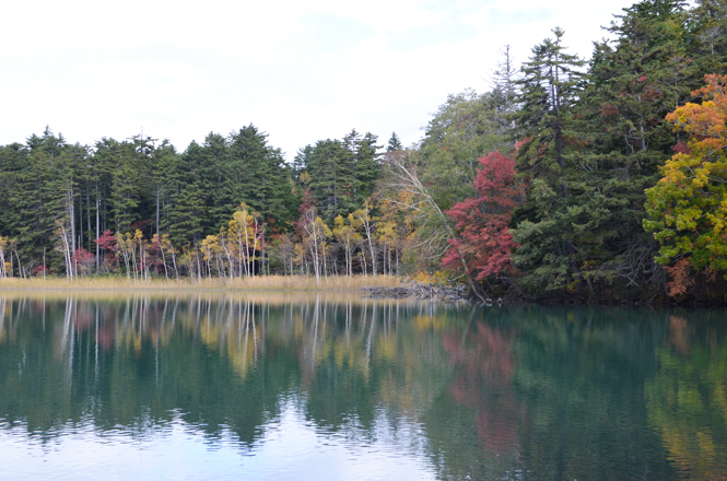 Fall Foliage around Lake Onneto in Ashoro