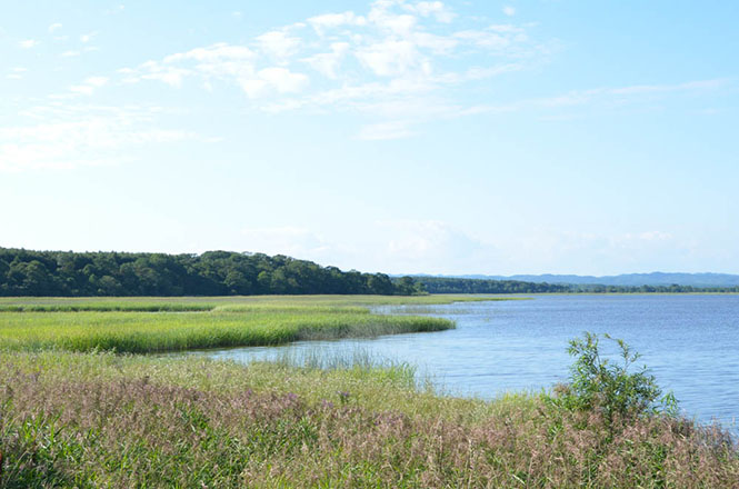 Oikamanai Marsh in Taiki