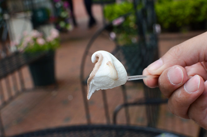 Soft Serve Ice Cream -Shiroikoibito Park in Sapporo-