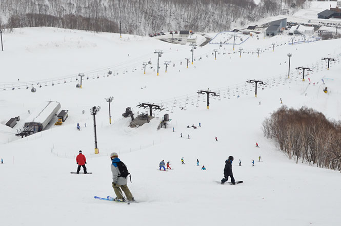 Skiing Area in Niseko