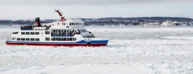Drift Ice and Aurirago Cruise