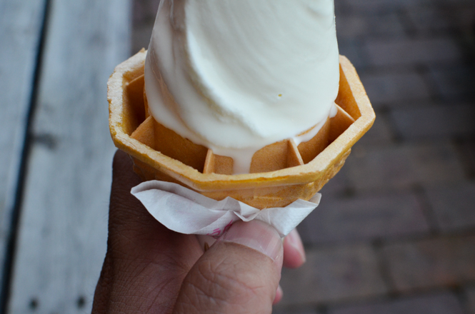 Soft Serve Ice Cream -Aichu Land in Naganuma-