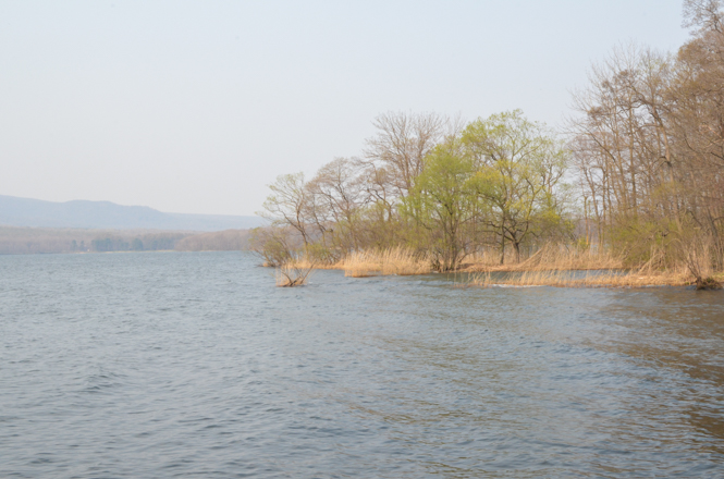 Onuma Kohan Marsh in Nanae