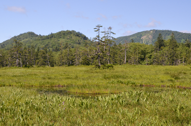 Ukishima Marsh in Kamikawa