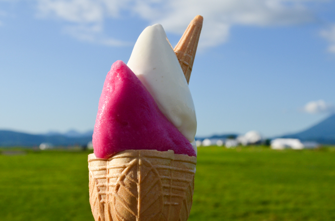Gelato with Red Perilla Flavor and White Lupine Bean Flavor -Lake Hill Farm in Toyako-
