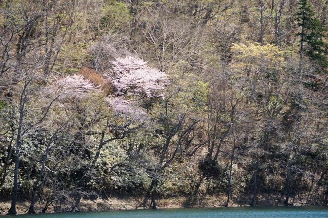 Lake Toyoni in Erimo